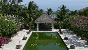 Tropical resort tilting up stock footage