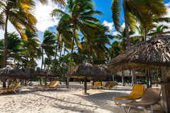 Tropical resort under palm trees on sandy beach Royalty Free Stock Photography