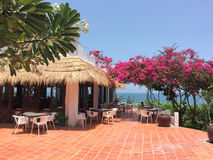 Tropical restaurant with many flowers at the sunny day Royalty Free Stock Photos