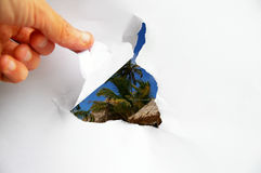 Tropical revele imagen de archivo libre de regalías