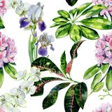 Tropical rhododendron flowers and iris seamless pattern watercolor. vector illustration