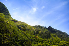 Tropical ridgeline of the mountains of Kauau. Wispy clouds drift over the top of a lush ridgeline on the island of Kauai Stock Images