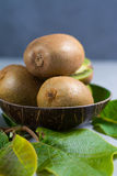 Tropical ripe organic kiwi fruit with leaves ready to eat Royalty Free Stock Photos