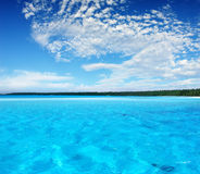 Tropical Ripple Stock Photography