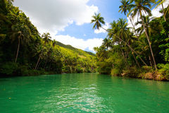 Tropical river Royalty Free Stock Image
