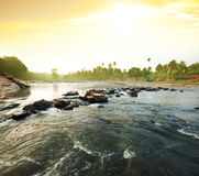 Tropical river Stock Image