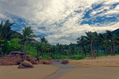 Tropical river landscape, Da Nang, Vietnam. River through palm tree lined countryside in Da Nang, Vietnam on sunny day royalty free stock images
