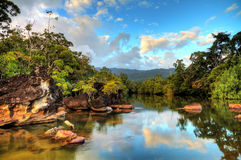 Tropical river Masoala Royalty Free Stock Photos