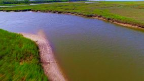 Tropical river surrounded by wetlands and marshes. Aerial flyover tropical river in wetland everglades covered in lush green marine vegetation stock video footage
