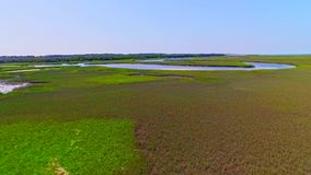 Tropical river surrounded by wetlands and marshes. Aerial flyover tropical river in wetland everglades covered in lush green marine vegetation stock footage