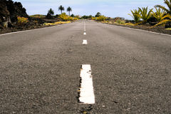 Tropical road. Landscape photo of a road leading into the distance with a tropical backdrop Stock Image