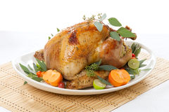 Tropical Roasted Turkey on white Stock Images