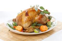 Tropical Roasted Turkey on white Stock Images