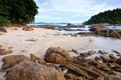 Tropical rocky beach with rain forest Royalty Free Stock Image