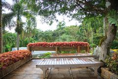 Tropical rural house home garden bamboo wooden on balcony terrace with natural forest view background. Interior, Exterior Architec stock images
