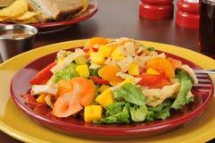 Tropical salad closeup Royalty Free Stock Photo