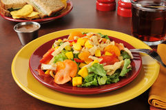 Tropical salad with a turkey and swiss cheese sandwich Royalty Free Stock Images