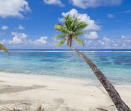 Tropical Samoa Royalty Free Stock Photos