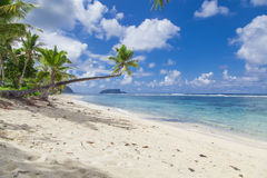 Tropical Samoa. With white sandy beaches and coconut palms Stock Photos