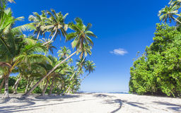 Tropical Samoa. With white sandy beaches and coconut palms Stock Images