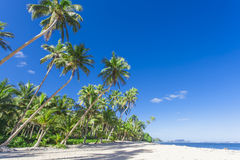 Tropical Samoa. With white sandy beaches and coconut palms Royalty Free Stock Images