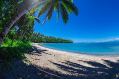 Tropical Samoa. With white sandy beaches and coconut palms Stock Photography