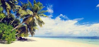 Tropical sand beach against blue sky Stock Photo