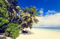 Tropical sand beach against blue sky Stock Image