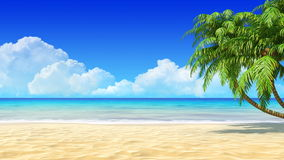 Tropical sand beach background with palms.