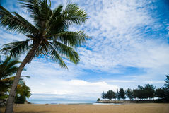 Tropical sand beach. With blue sky at Brunai Royalty Free Stock Photography