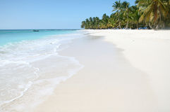 Tropical Sand Beach, Ocean. Tropical Paradise - White Sands Beach, Caribbean Ocean and Coconut Palm Trees background suitable for a variety of traveling and Stock Images