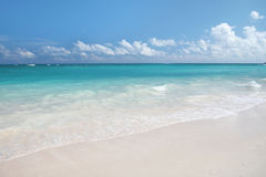 Tropical Sand Beach and Ocean Background Royalty Free Stock Images