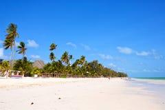 Tropical sand beach. With palm trees in Zanzibar Royalty Free Stock Photo