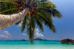 Tropical sand beach Stock Photography