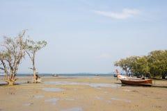 Tropical Sand Beach Royalty Free Stock Photo