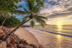 Sunset at tropical beach. stock images