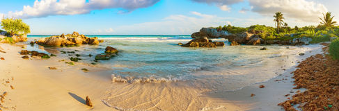 Tropical Sandy Beach on Caribbean Sea. Mexico. Royalty Free Stock Photo