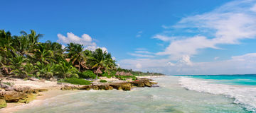 Tropical Sandy Beach on Caribbean Sea. Mexico. Tropical Sandy Beach on Caribbean Sea. Yucatan, Mexico Royalty Free Stock Image