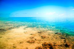 Tropical sandy beach Maldives Royalty Free Stock Photos