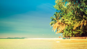 Tropical sandy beach overgrown green palm tree with clear sea water on background blue sky Royalty Free Stock Photos