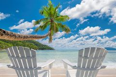 Tropical sandy beach with palm and turquoise sea. royalty free stock photography