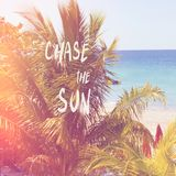 Tropical  sandy beach with palms quote chase the sun. Beautiful tropical  sandy beach with palms with summer quote chase the sun  hgj stock photography