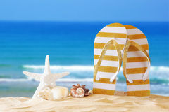 Tropical sandy beach, sea shells and flip flops Royalty Free Stock Image