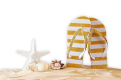 Tropical sandy beach, sea shells and flip flops Stock Image