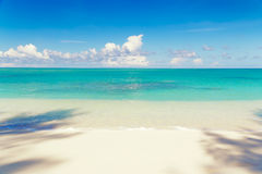Tropical sandy beach in Seychelles, Mahe island Stock Photos