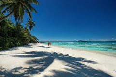 Tropical sandy beach with a shadow of the coconut palm trees. Outdoors photography of picturesque Seychelle islands Royalty Free Stock Photos