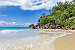Tropical sandy beach Royalty Free Stock Photography