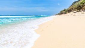 Tropical sandy beach Stock Photos