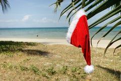Tropical santa claus hat royalty free stock photography