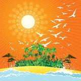 Tropical scene. Tropical beach, palm trees, birds and sunlight illustration Stock Images